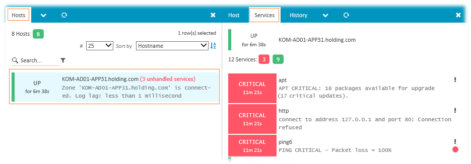 Icinga Web UI - CRITICAL Services on Client