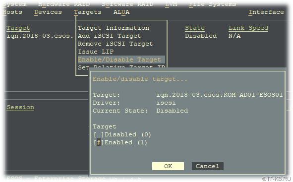 ESOS Targets - Enable iSCSI Target