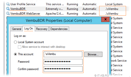 Vembu BDR Services Windows User