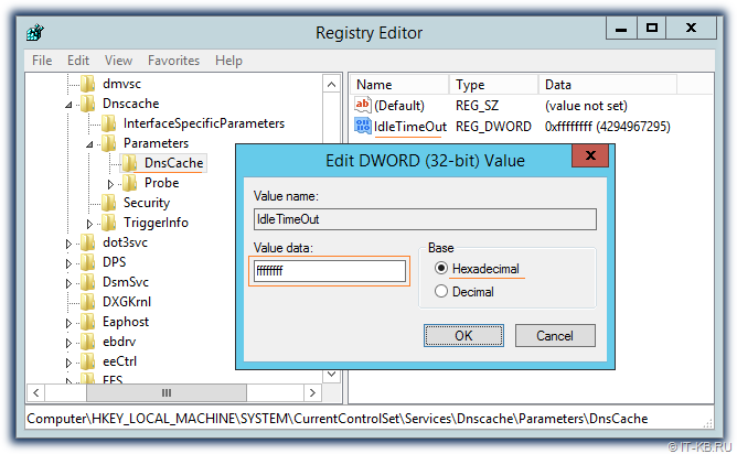 Registry settings for DNS Client DnsCache service - IdleTimeOut