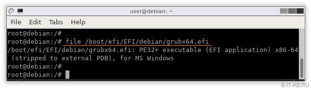 Linux EFI boot file