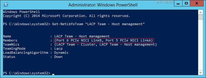 Get Windows Server NIC Team properties