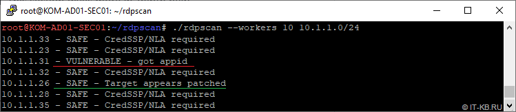 Run rdpscan tool for network scan