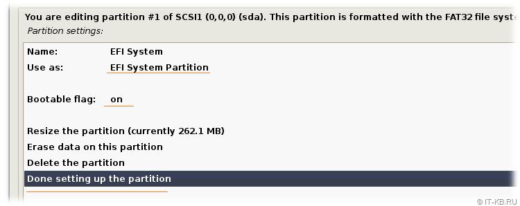 Debian Buster Installation - Partition disks - EFI System Partition